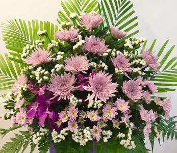 Condolence 55